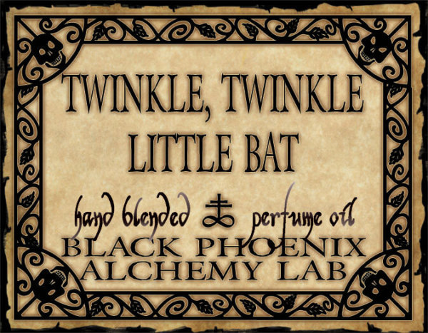 Twinkkle, Twinkle Little Bat