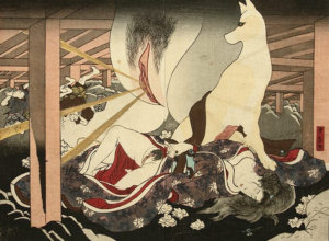 Destructive Vagina of the Fox Spirit