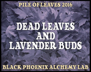 dead-leaves-and-lavender-buds