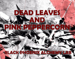 deadleaves2017 WEB dead leaves and pink peppercorn