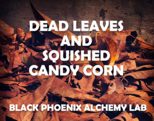 deadleaves2017 WEB dead leaves and squished candy corn