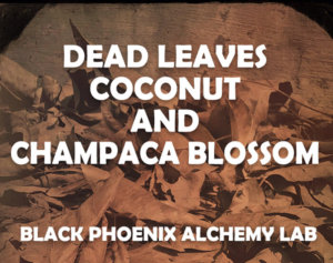 deadleaves2017 WEB dead leaves coconut and champaca blossom