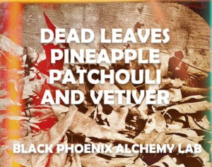 deadleaves2017 WEB dead leaves pineapple patchouli and vetiver