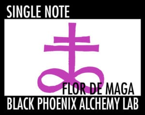 single note flor de maga WEB