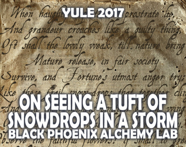 YULE 2017 LABEL - ON SEEING A TUFT OF SNOWDROPS IN A STORM