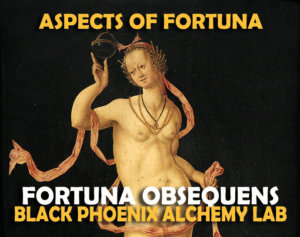 aspects of fortuna LABEL - Obsequens